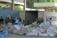Đà Nẵng: bắt giữ 06 tấn vảy tê tê, 02 tấn ngà voi