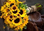 Gợi ý cách chọn hoa ý nghĩa cho ngày Phụ nữ Việt Nam 20/10