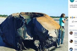 Xôn xao tin đồn đĩa bay trôi dạt vào bờ biển Mỹ
