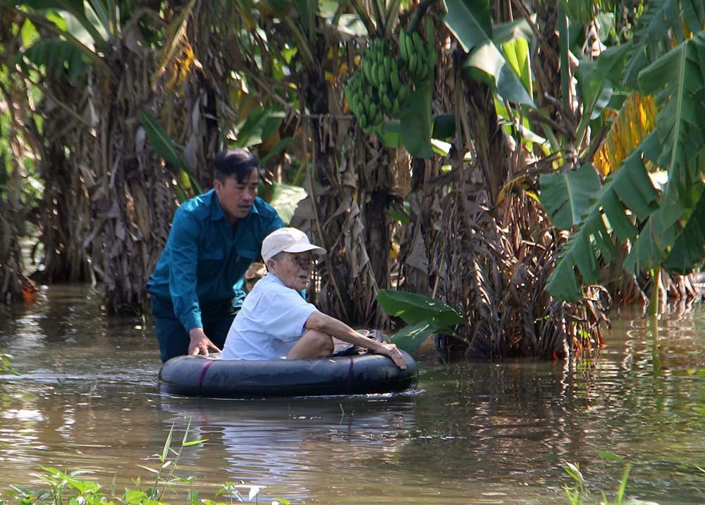 ngập lụt,vỡ đê,lũ lụt,Cần Thơ