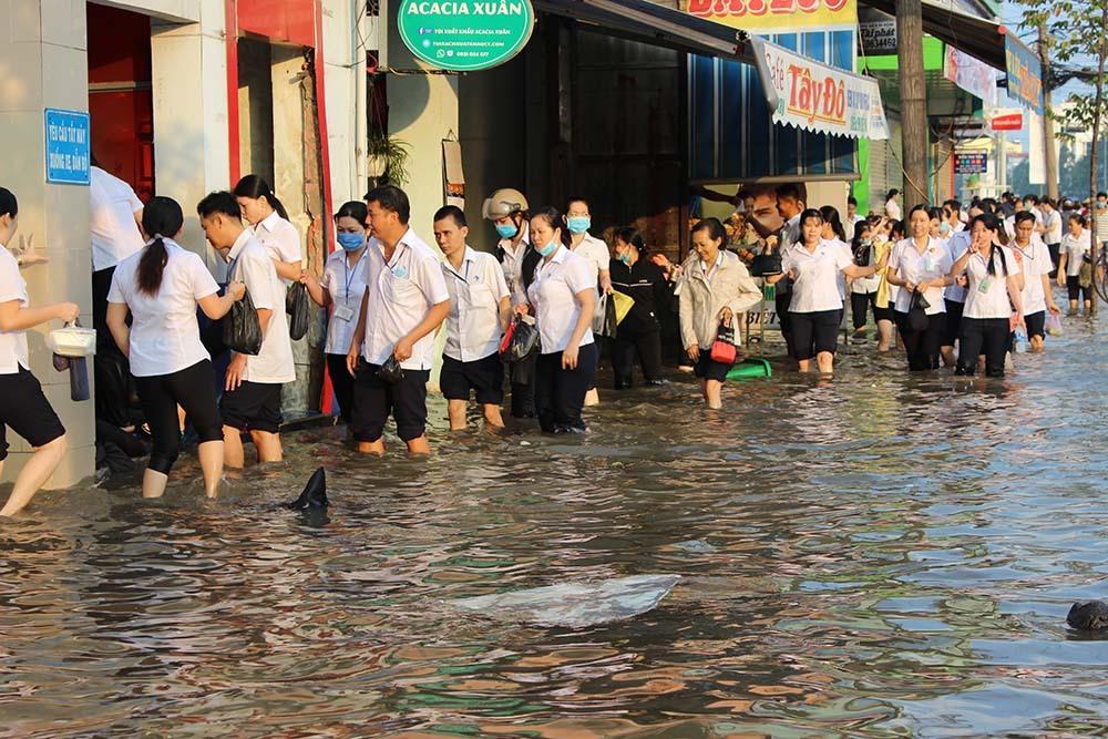 ngập lụt,vỡ đê,lũ lụt,Cần Thơ,Triều cường