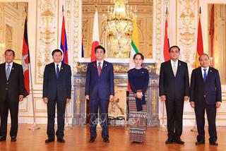 Việt Nam luôn coi trọng cơ chế hợp tác Mekong - Nhật Bản