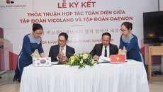 Vicoland hợp tác toàn diện với tập đoàn Daewon Hàn Quốc