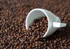 Giá cà phê hôm nay 12/10: Giảm 200 đồng/kg