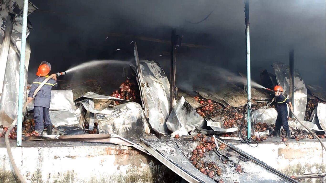 Hỏa hoạn thiêu rụi kho thanh long hơn 100 tấn ở Bình Thuận