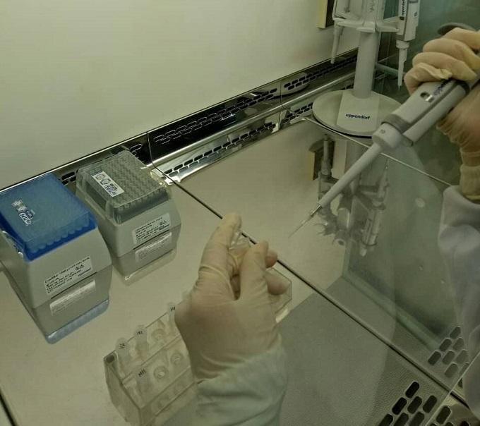 Tờ giấy giám định ADN giải oan cho người mẹ câm sau 20 năm