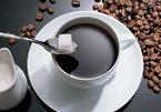 Giá cà phê hôm nay 15/10: Tăng trên 36.000 đồng/kg