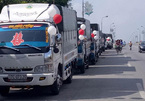 Thú vị với màn rước dâu bằng… xe tải ở Thái Bình