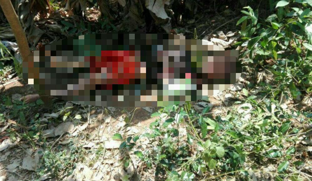 Lên núi cắt cỏ, người phụ nữ tử vong bất thường