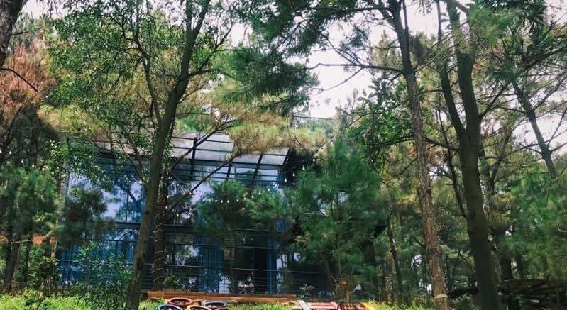 Hà Nội thanh tra toàn diện vụ 'xẻ thịt' đất rừng xây biệt thự ở Sóc Sơn