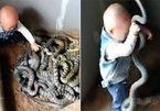 Bé mới biết đi gây sốc vì bắt rắn làm đồ chơi