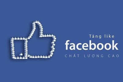 """Ẩn họa không ngờ vì """"chạy"""" like và sub ảo trên Facebook"""