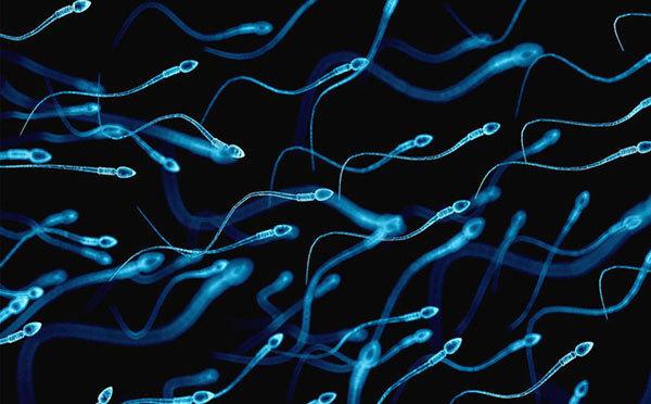 Kỳ tích vợ mang thai từ người chồng không có tinh trùng