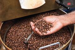 Giá cà phê hôm nay 14/11: Tiếp tục rớt giá mạnh