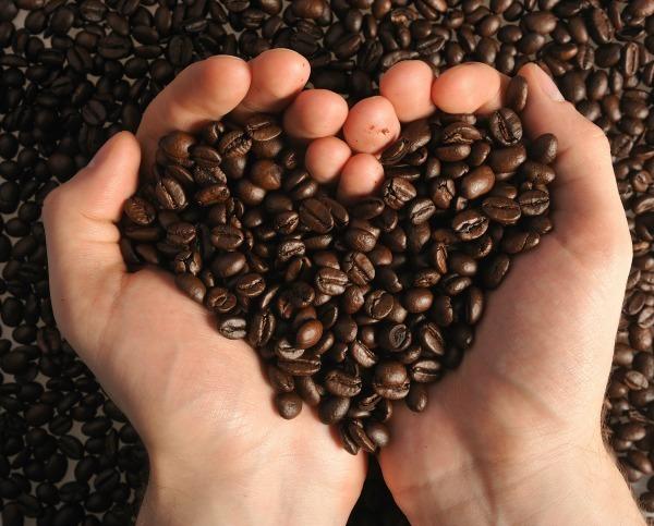 Giá cà phê hôm nay 29/10: Giá cà phê Robusta giảm