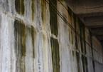 Cao tốc 34.000 tỷ thấm dột loang lổ: Mặt cầu thiếu rãnh dẫn nước