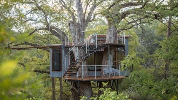 nhà đẹp,nhà trên cây,người rừng