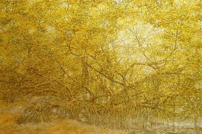 Về miền cổ tích chỉ có trong tranh