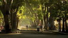 Dự báo thời tiết 2/11: Hà Nội ngày nắng hanh, đêm rét