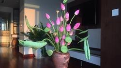 Tiền bạc ngập két chỉ nhờ chọn đúng loại hoa cắm trong nhà