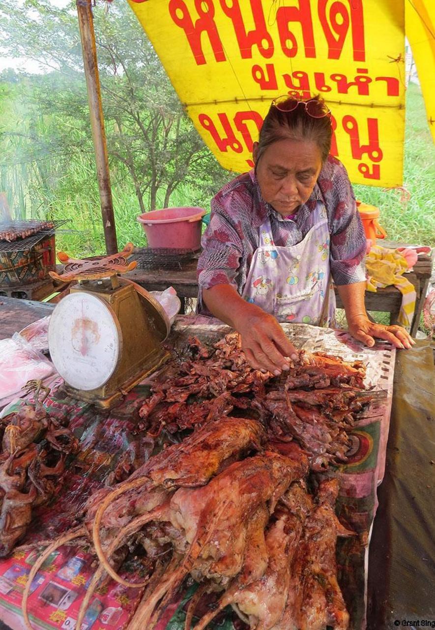 Thịt chuột món ngon thượng hạng: Điều khẳng định ở nhiều nước trên toàn cầu