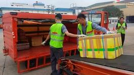 Ném hành lý của khách ở Tân Sơn Nhất, 2 nhân viên bị sa thải