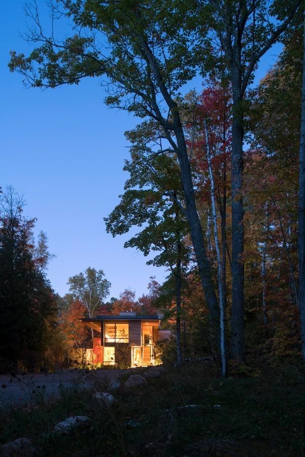 Choáng ngợp trước dinh thự gỗ xa hoa ẩn mình giữa rừng