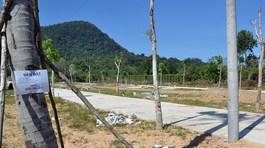'Loạn' phân lô bán nền ở Phú Quốc: Truy trách nhiệm tổ chức, cá nhân