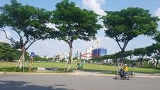 Trúng đấu giá 650 tỷ không được nhận đất: Doanh nghiệp kêu lên Thủ tướng