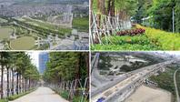 Hà Nội: Đường nghìn tỷ khác lạ sau 1 năm 'khai tử' hàng cổ thụ