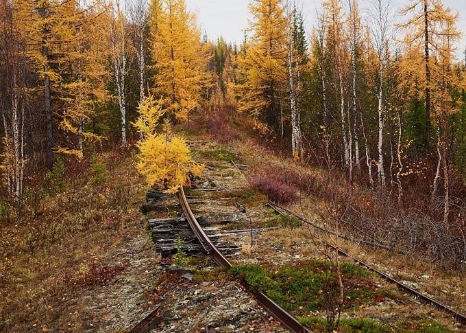 Cận cảnh tuyến đường sắt ở châu Âu, nơi 300.000 công nhân từng bỏ mạng