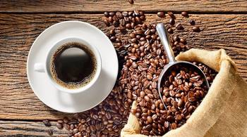 Giá cà phê hôm nay 19/11: Giảm 400 đồng/kg