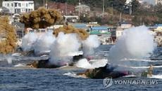 Triều Tiên lên án cuộc tập trận chung Mỹ - Hàn