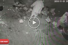 """Điên tiết vì bị vứt rác sang cửa nhà, nam thanh niên """"mạnh tay"""" với bà cụ oái oăm"""