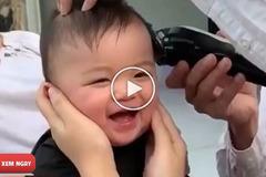 Em bé cười sặc sụa khi cắt tóc cực đáng yêu lấy đi biết bao trái tim của cư dân mạng