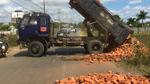 Bị truy hóa đơn, đổ cả xe gạch giữa đường để chống đối
