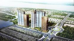 DKRA Vietnam độc quyền phân phối dự án CitiAlto