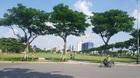 Trúng đấu giá 650 tỷ: Các bộ nói giao đất, Đà Nẵng đòi hủy kết quả
