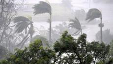 Áp thấp nhiệt đới giật cấp 9 trên Biển Đông