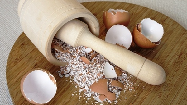 10 tác dụng thần kỳ của vỏ trứng làm bạn kinh ngạc sau khi biết