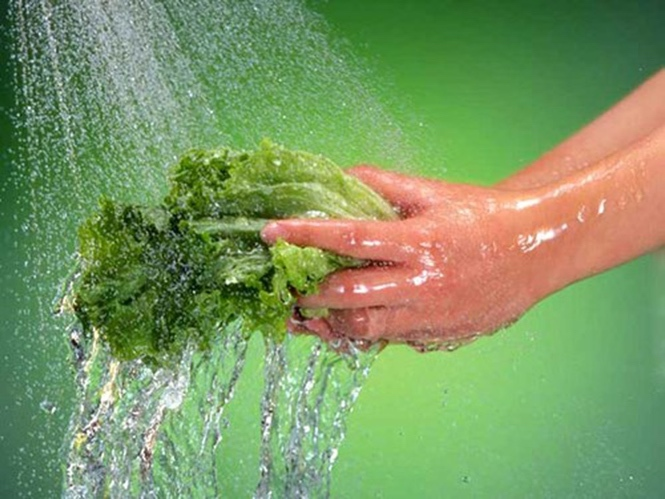 Thuốc trừ sâu,thuốc bảo vệ thực vật,rửa rau