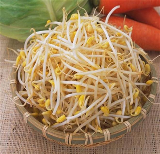 Giá đỗ là thực phẩm được nhiều người Việt yêu thích nhưng có hàm lượng purin cao
