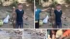 Triệu tập thanh niên giết khỉ tiếp bạn rồi 'khoe' trên Facebook