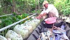 Phát hãi ngàn con lươn quấn nhau lúc nhúc trong cái can nhựa