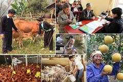 Hà Nội: 100% tiền quỹ Vì người nghèo ủng hộ người nghèo