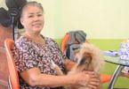 Người phụ nữ Sài Gòn cưu mang chó quý của đại gia phá sản