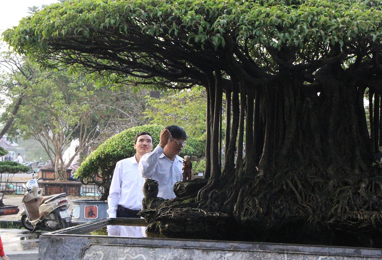 Mãn nhãn với 'Nhất Tọa Kinh Thiên' hơn 100 năm tuổi, giá hơn 5 tỷ