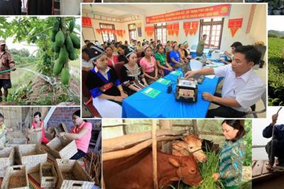 TP.HCM: 18 năm, 1.700 tỷ đồng hỗ trợ người nghèo