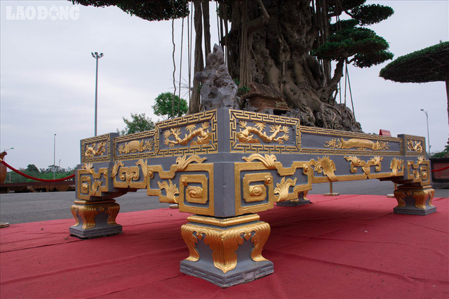 Xôn xao cây cảnh giá 10 tỷ, dát 5 lượng vàng quanh chậu của đại gia Việt