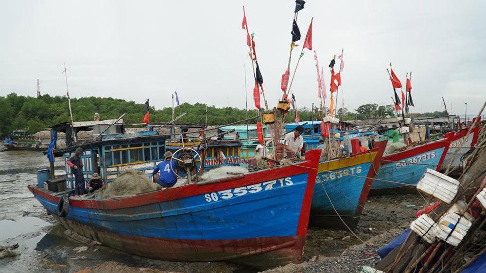 Bão số 9 đổ bộ vào Bình Thuận - Bến Tre, mưa lớn lan tới Trung Trung Bộ